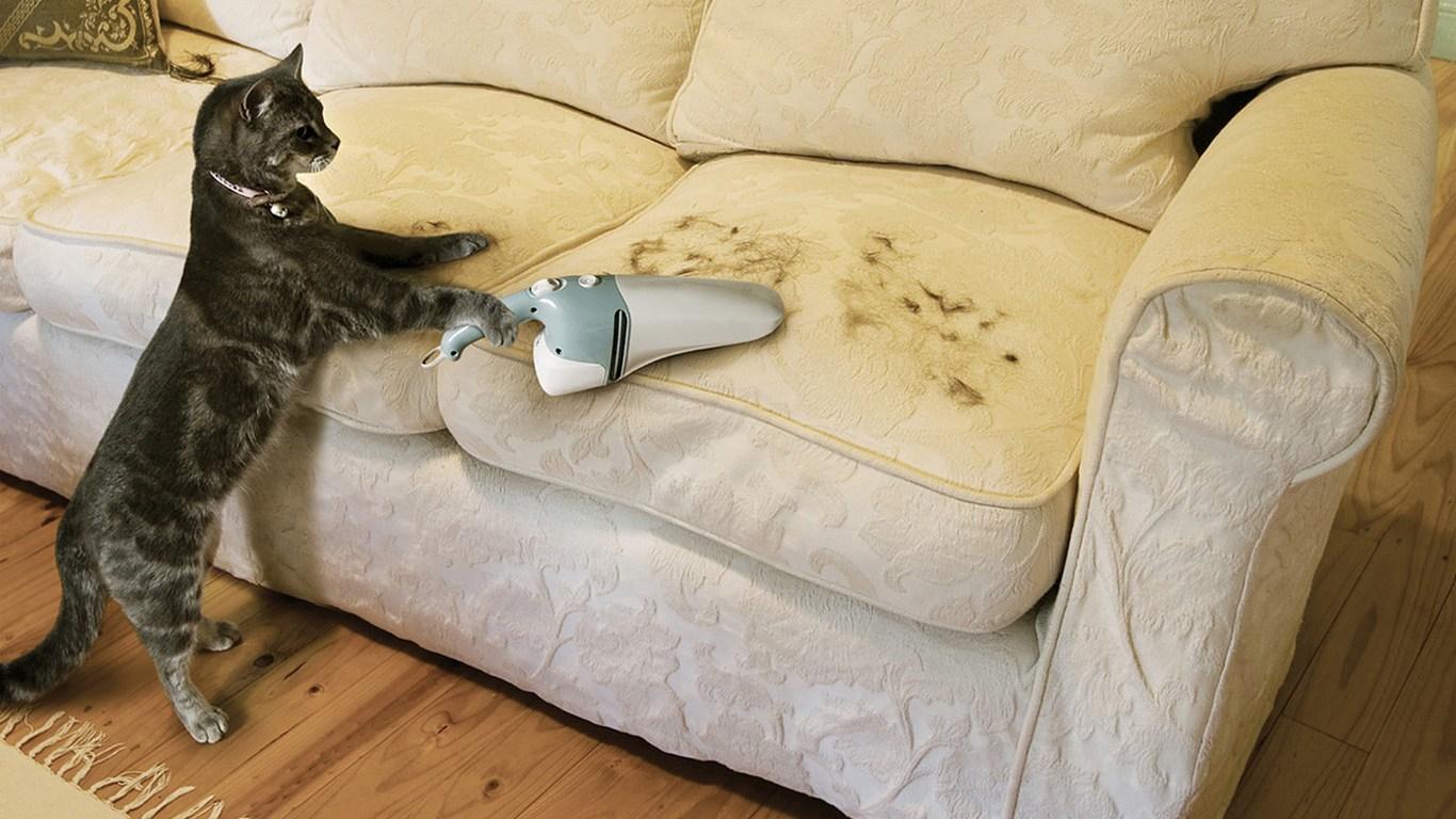 Почистване на диван от замърсявания